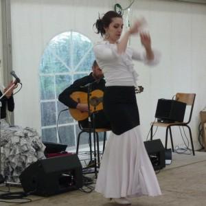 DansesFete2013