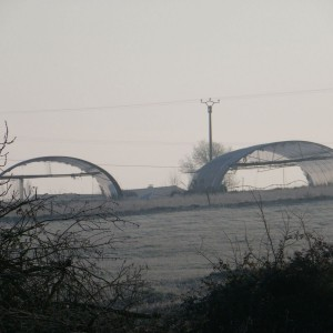2012 01 16 photos d'hivers Ceran 075-1